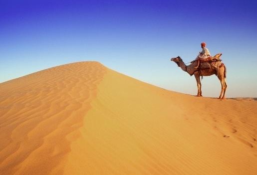 Camel Safari Rajasthan