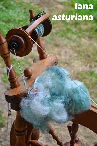lana asturiana