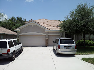 Roof Cleaning Palm Harbor Florida