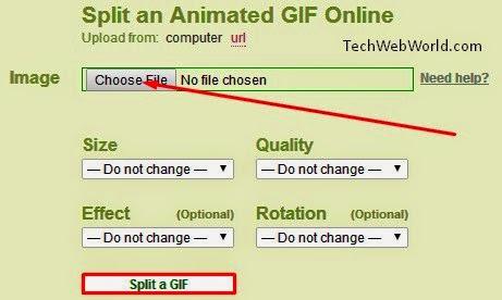 split gif image
