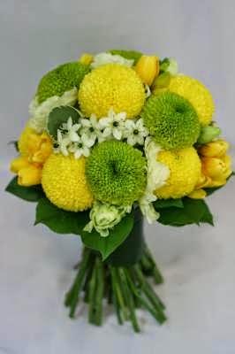 卉豐的乒乓菊花球