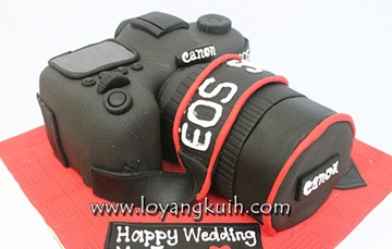 3D- DSLR Camera Cake
