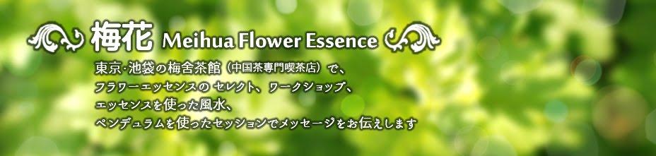 梅花(めいふぁ)Flower essence