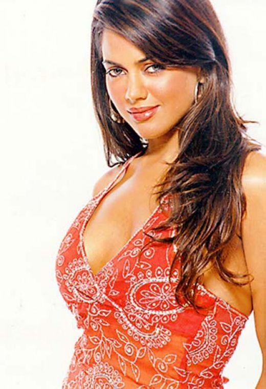 Sameera reddy nude sex photos — photo 4