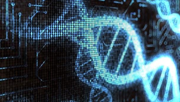 Quanto espaço digital ocupa a informação genética do corpo? (com video)