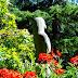 Visite de Butchart Gardens sur l'île de Vancouver