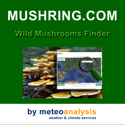 Mushring - Wild Mushrooms Finder