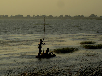 (Pakistan) - Karachi - Haleji Lake Wildlife Sanctuary