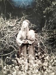 Bianca Casady, Flor Selvagem