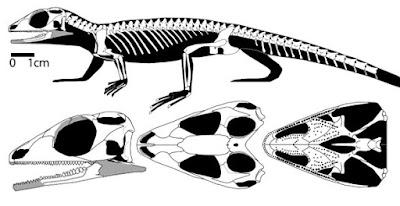 jurassic reptils