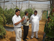 VISIT BY GREEN HOUSE