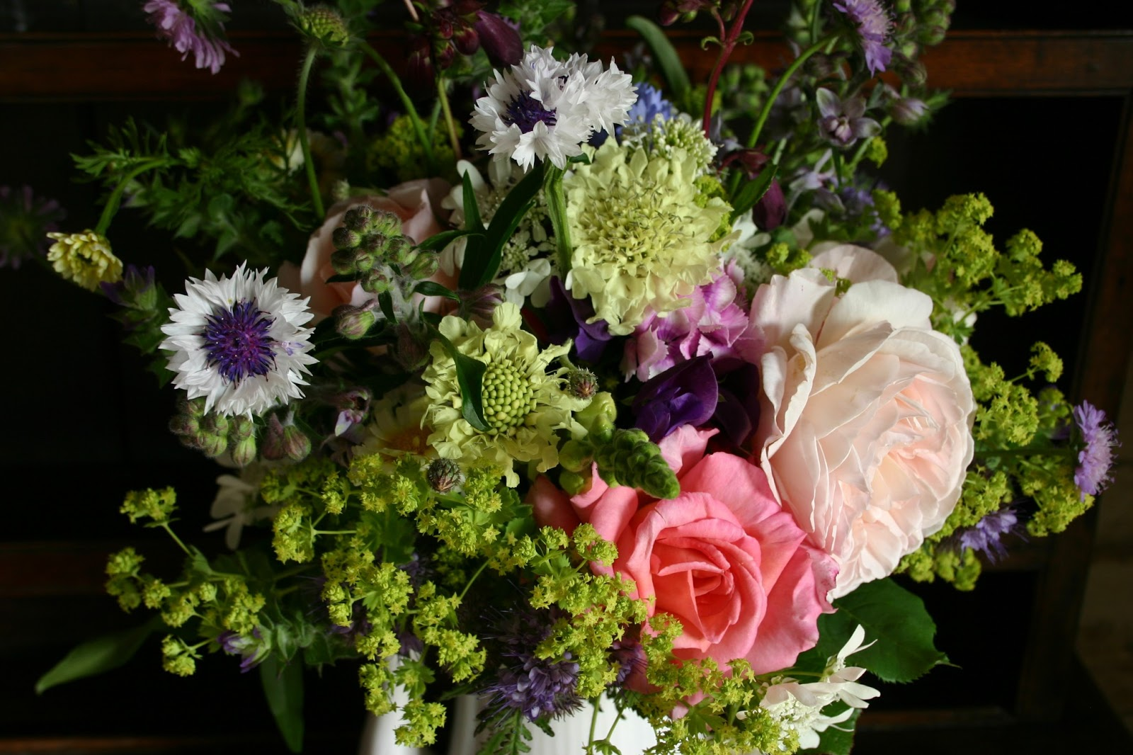 Foxgloves other british natives as cut flowers common farm catmint alchemilla annual chrysanths sweet peas snapdragons all in a mahoosive bouquet of english country flowers by common farm flowers dhlflorist Images