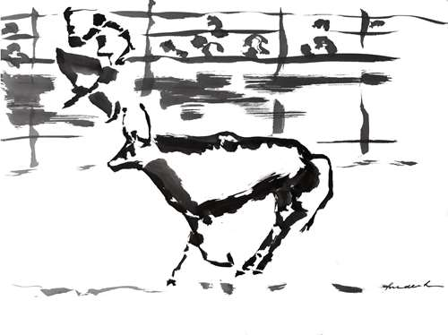 Course camarguaise 2