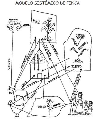 modelo sistémico de finca