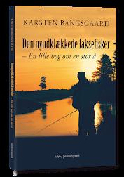 Den nyudklækkede laksefisker - en lille bog om en stor å