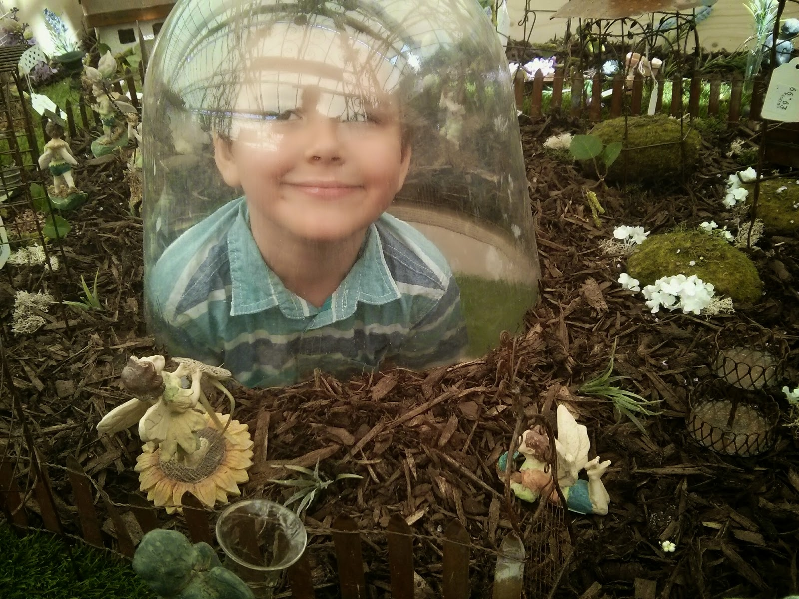 Big Boy viewing the Fairy Garden