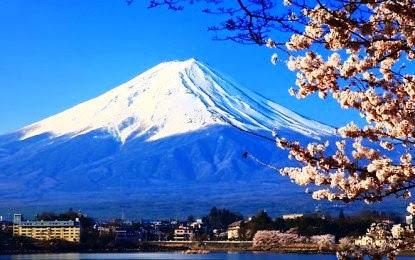 Install Fuji