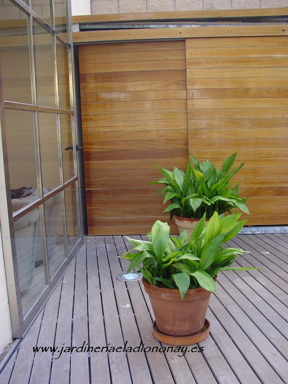 Jardineria eladio nonay patios interiores con estilo - Patios con estilo ...