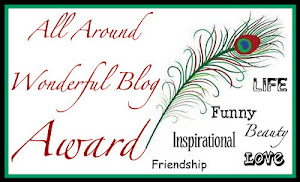 All Around WONDERFUL Blog Award