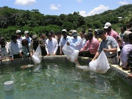 Entidades acuerdan impulsar la producci n peces y for Produccion de peces en estanques