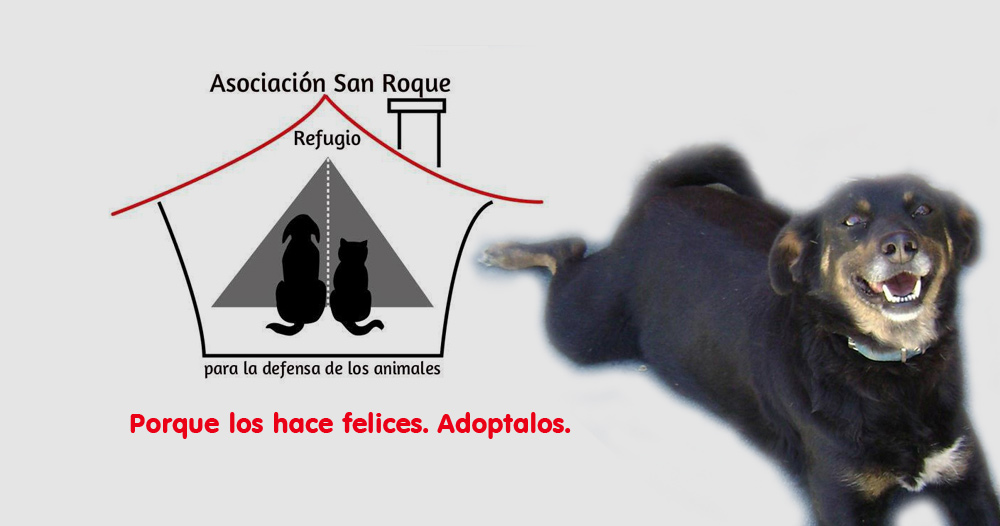 Asociacion Refugio San Roque