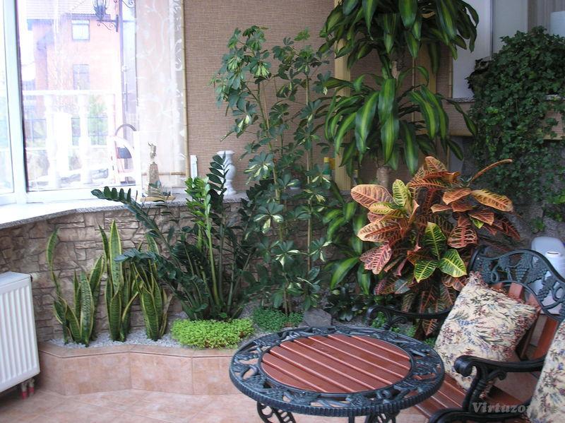 Сад в квартире фото
