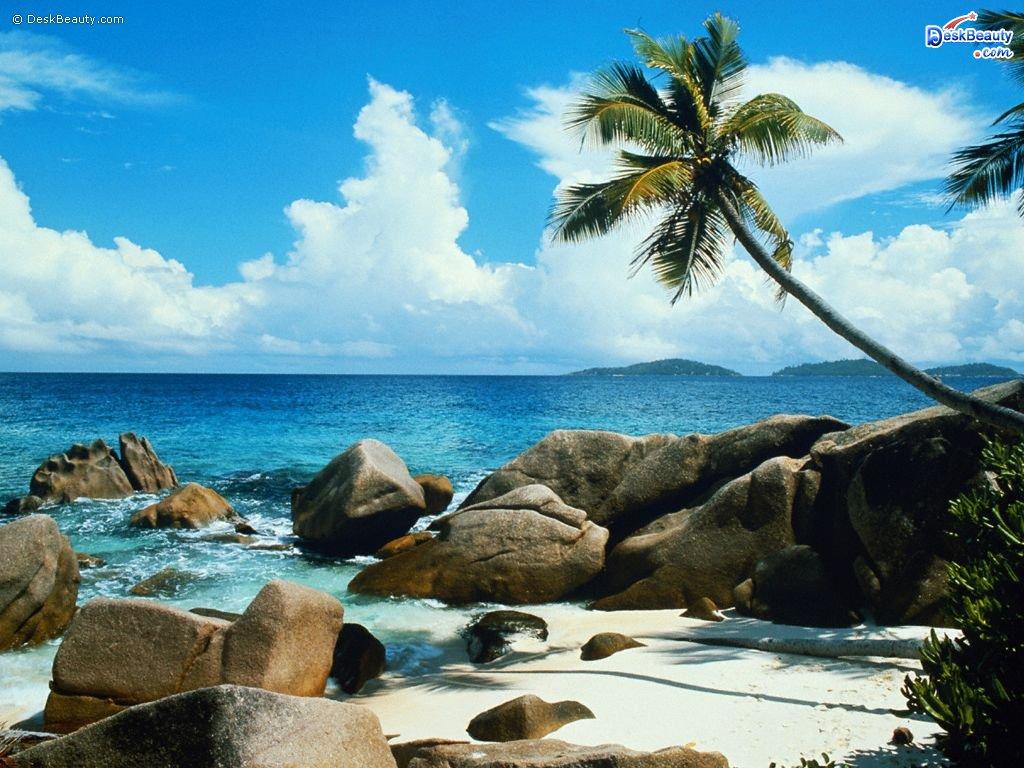 Beautiful Nature Wallpapers, Free Nature Wallpapers, 3D Nature Wallpaper, Beach Wallpaper, Spring Wallpaper, Landscape Wallpaper, Tropical Beach Wallpaper, Beautiful Beach Wallpaper