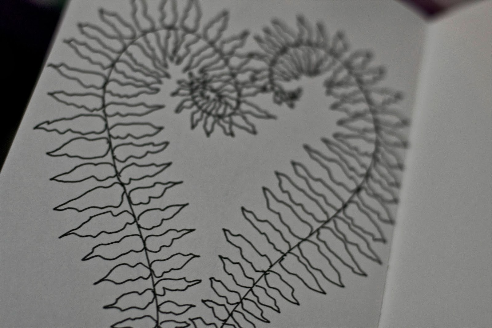 Rainy days are for sketching ferns and thinking of new designs.