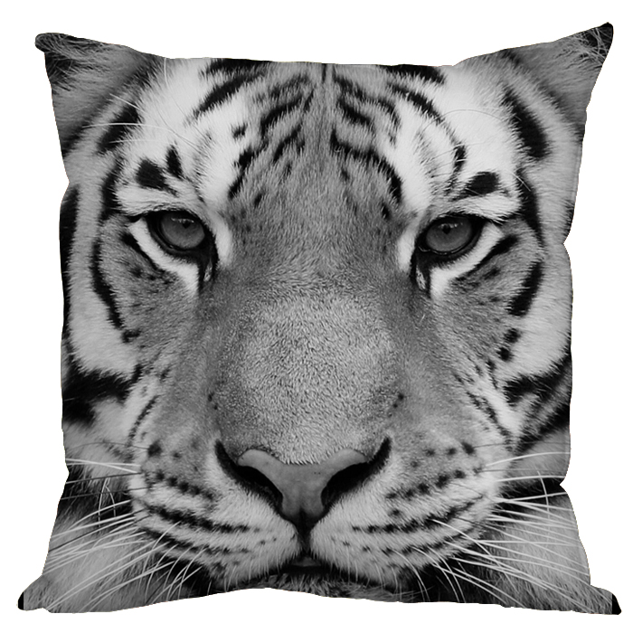The gallery for --> White Tiger Face Drawing