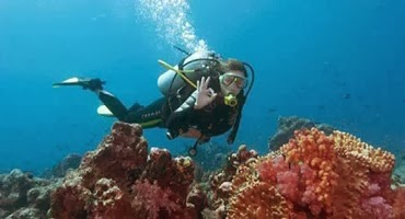 Bali Diving Tour