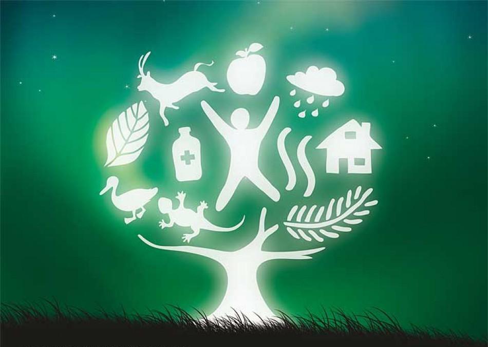 Desarrollo sustentable desarrollo sustentable dise o for Diseno sustentable