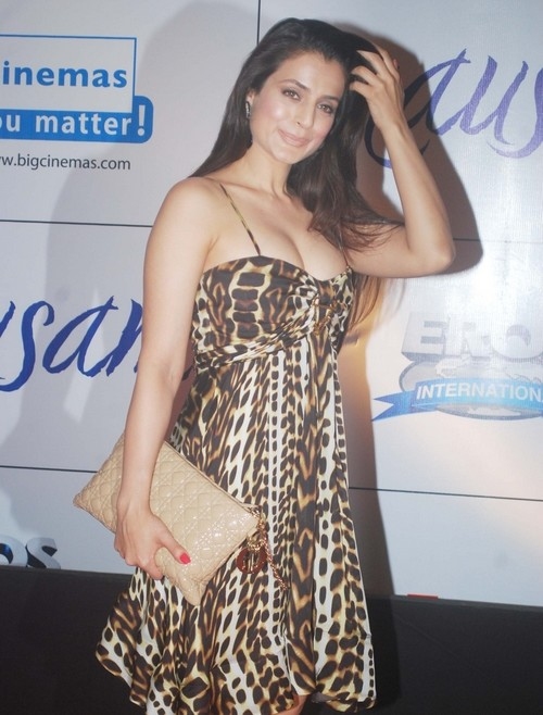 bollywood celebrities at mausam premier
