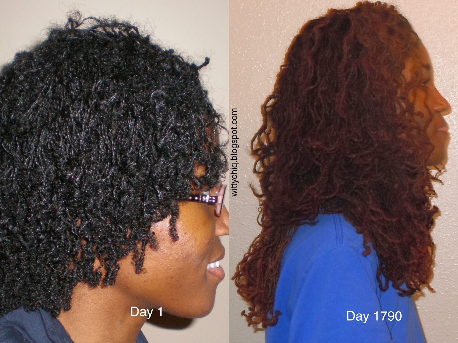 sisterlocks compared to dreadlocks love life and locks 5