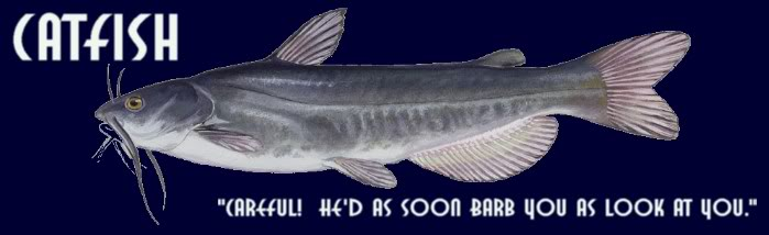Catfishblog