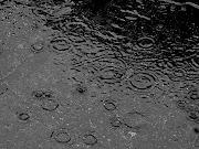 anche la pioggia si rialza e danza una piccola goccia che risorge è il sole.