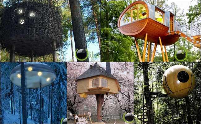 10 Rumah Pohon Terunik di Dunia