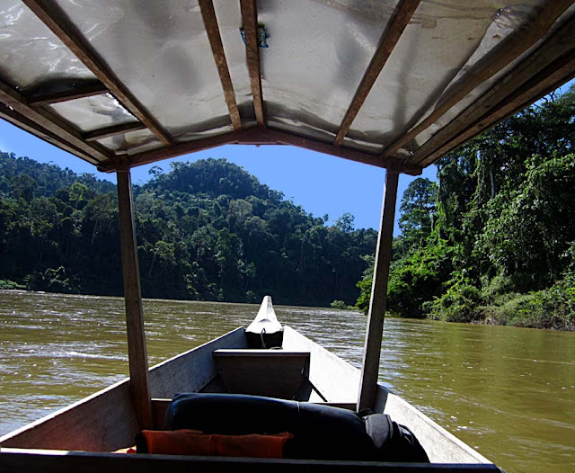tourist boat canoe in the river Tahan in Malaysia National Park