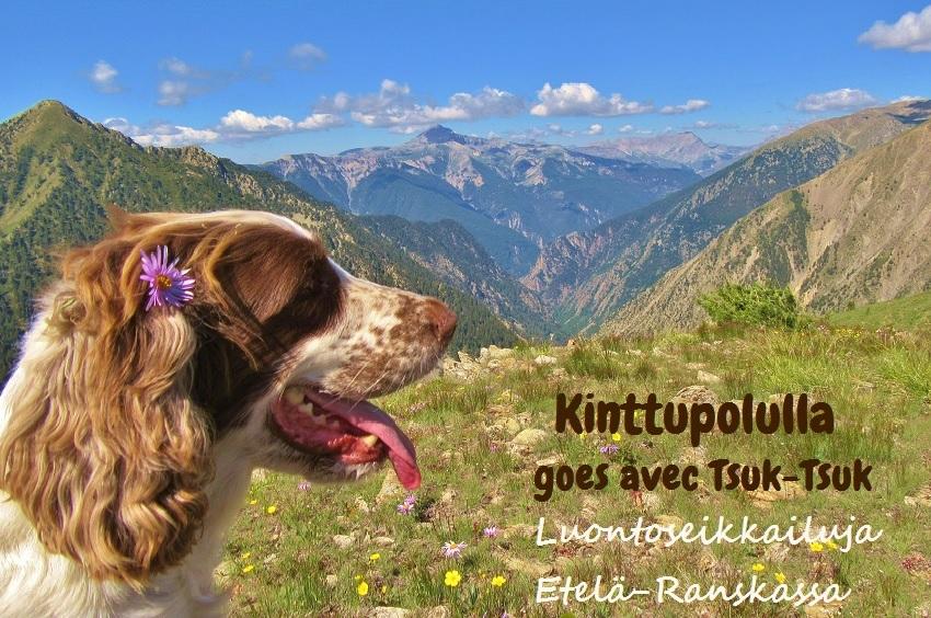 Kinttupolulla goes avec Tsuk-Tsuk