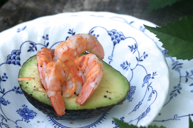 prawns avocado appetizer