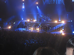 BFMV 2010