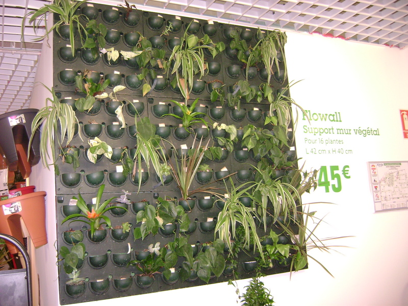 Attirant DIY Living Wall (Mur Vegetal)