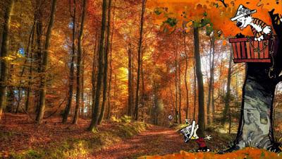 Calvin & Hobbes Mash-Up by Nite4awk