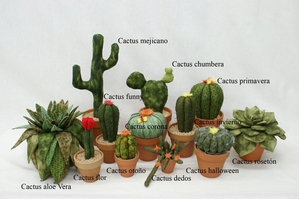 El patchwork de la graci cactus del desierto for Nombres de cactus