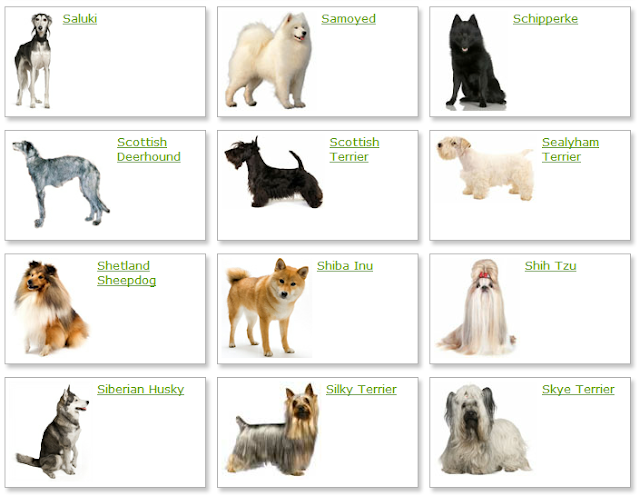 Dog Breeds List List of Dog Breeds