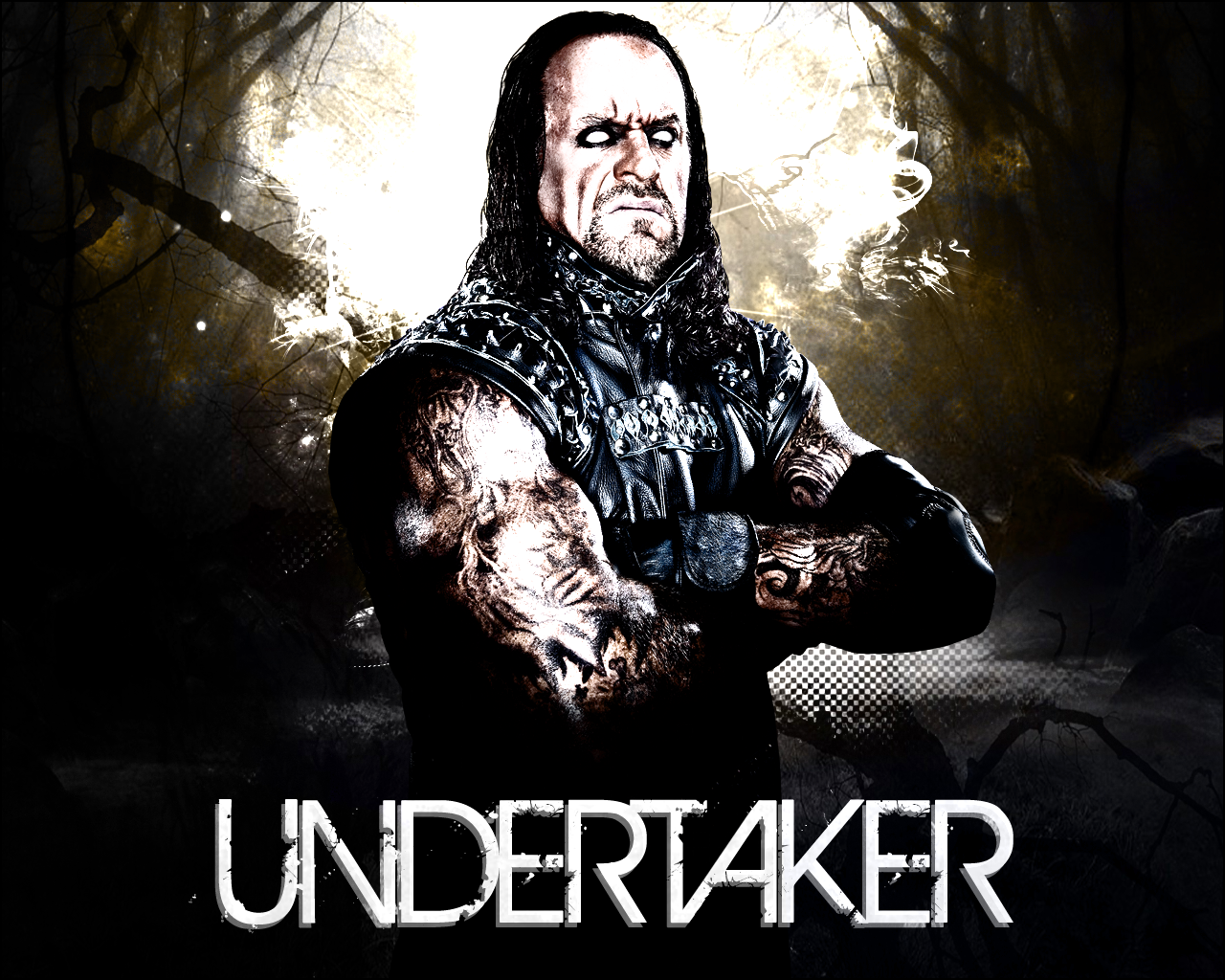 wwe undertaker wallpapers 2013