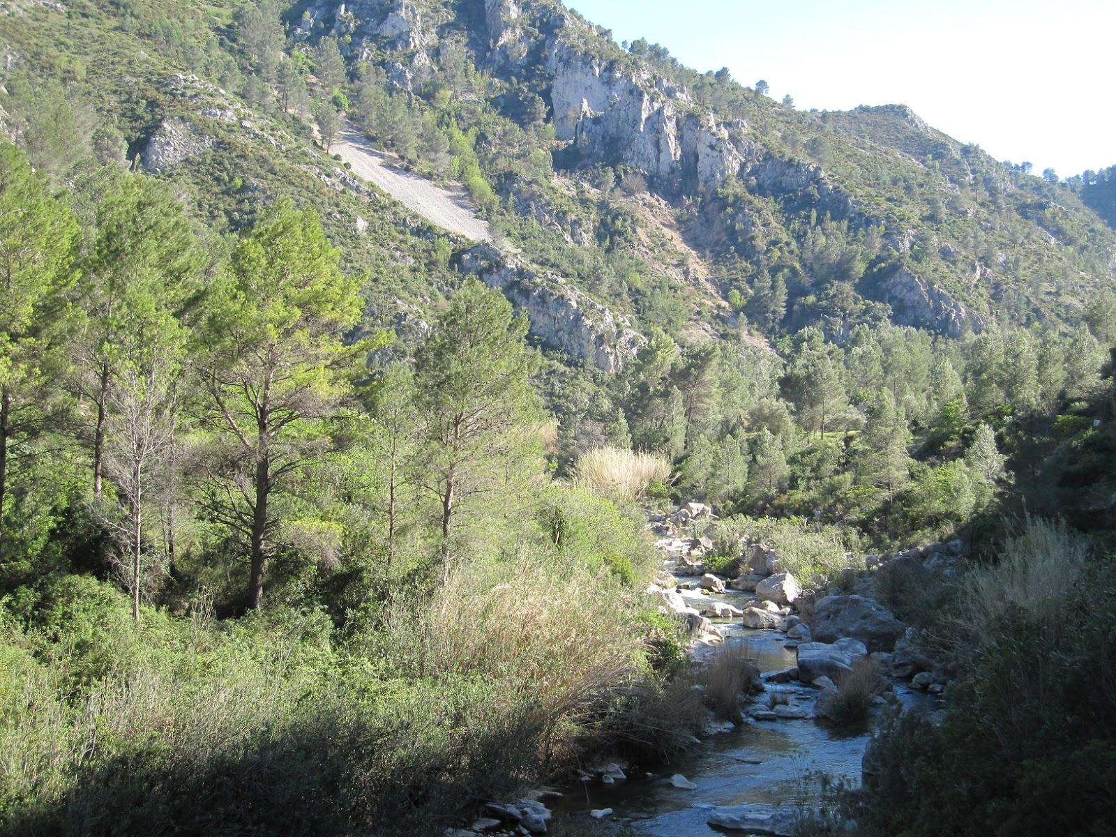 El riu Serpis al seu pas pel barranc de l'Infern