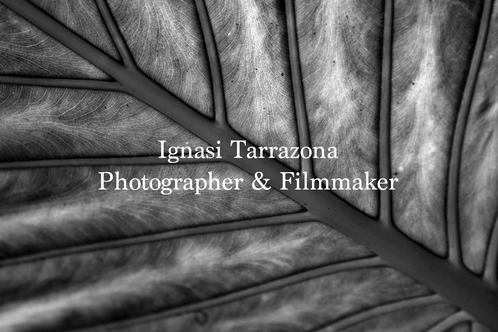 Ignasi Tarrazona Photographer & Filmmaker