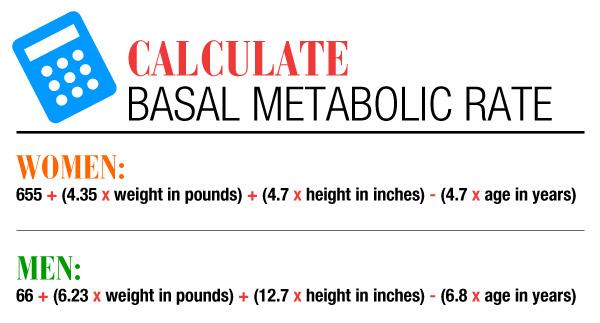 apple shape weight loss plans
