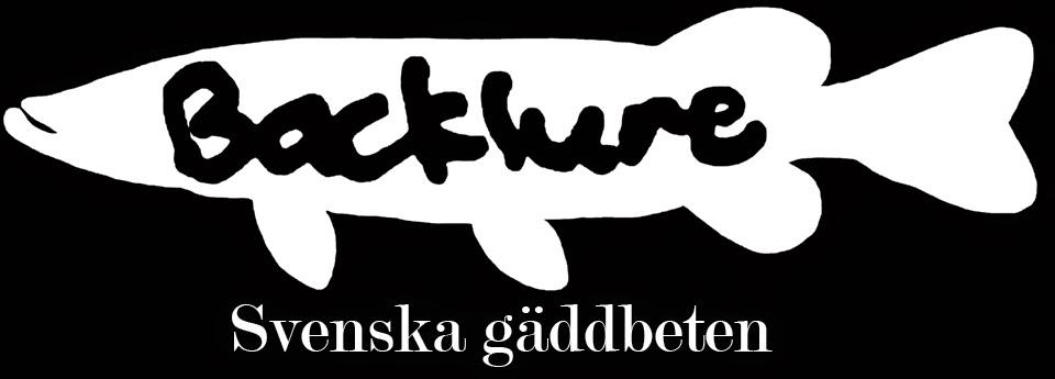 Backlure: fiske och betestillverkning