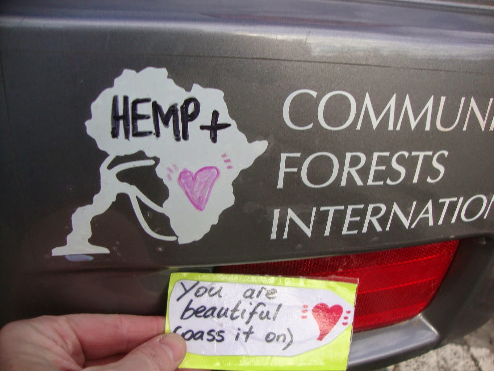 hemp + forests ... [click pic]